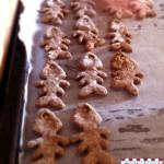 Biscotti-al-tonno7
