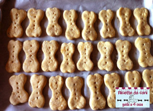 biscotti al formaggio - lasciate raffreddare nel forno