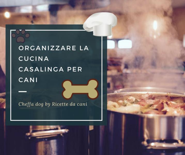 Organizzare la cucina casalinga per cani ricette da cani - Cucina casalinga per cani dosi ...
