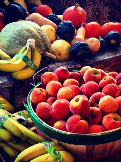che frutta dare al cane ?