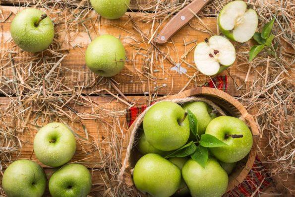 quali frutti possono mangiare i cani: le mele sono il frutto preferito