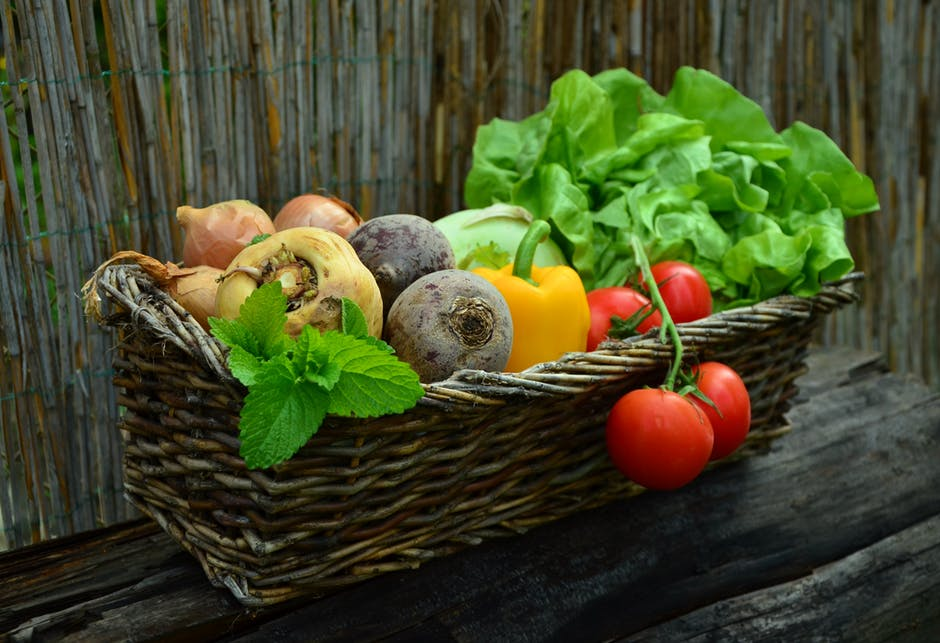 quale verdura dare al nostro cane ?