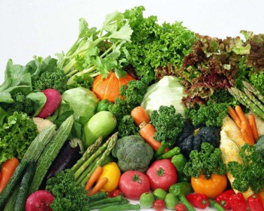 quali verdure dare ai nostri cani ?