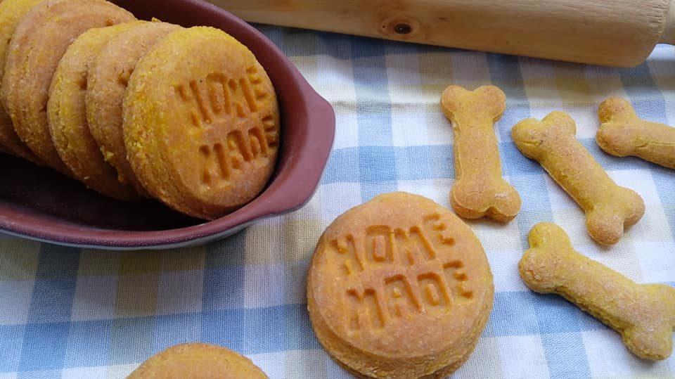 biscotti al salmone con esubero di lievito madre per cani