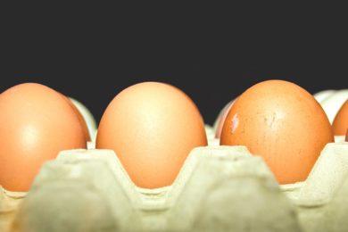 Integratore naturale di calcio - il guscio d'uovo