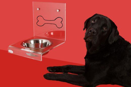 come far funzionare la dieta casalinga per il tuo cane: 7 consigli pratici
