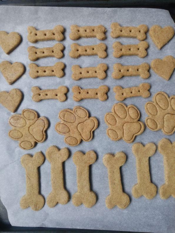 VITA DA PET FOOD BLOGGER:BACKSTAGE