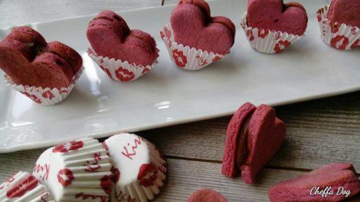biscotti di san valentino per cani