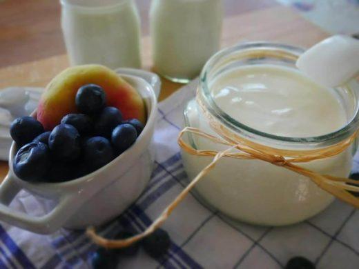yogurt al cane: realizziamolo in casa