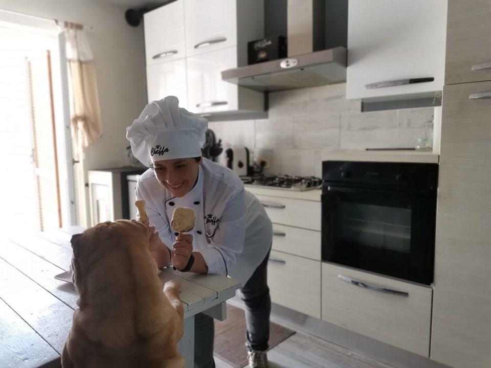 gelato per cani biscotto