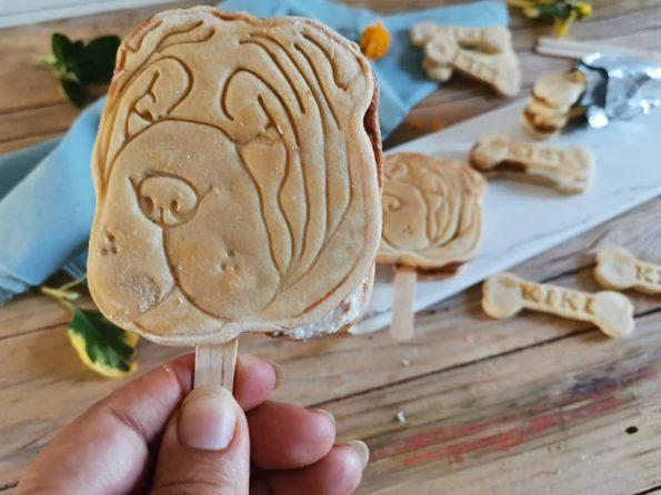 biscotto gelato per cani